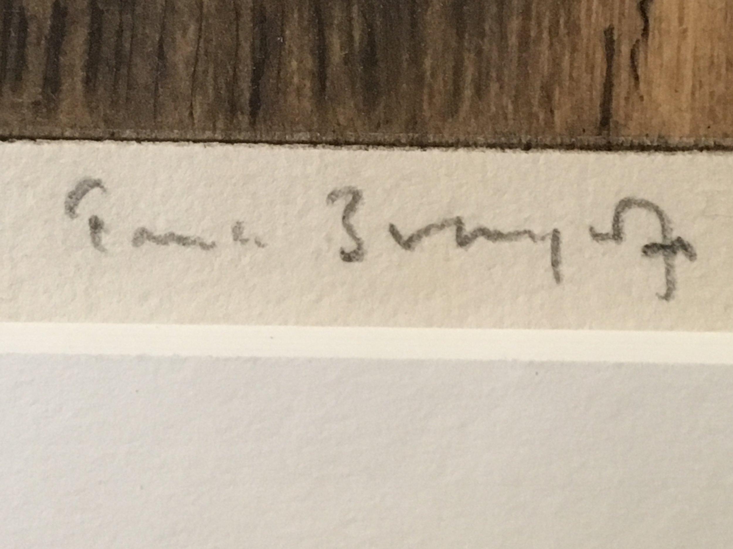 Brangwyn Signature