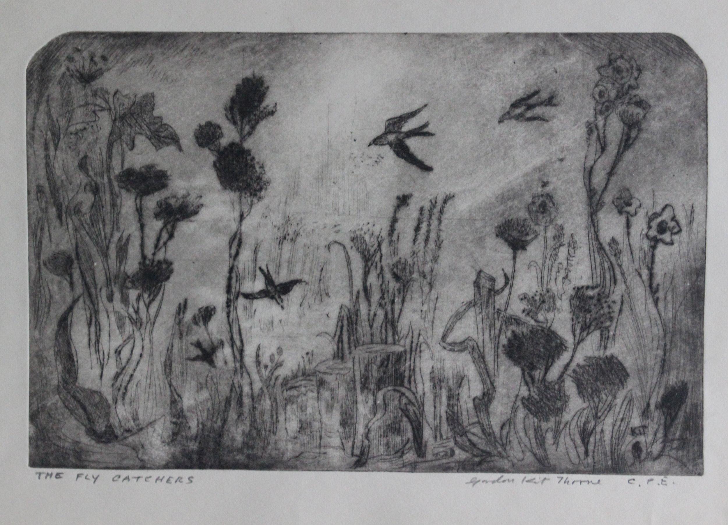 Gordon Kit Thorne, The Fly Catchers