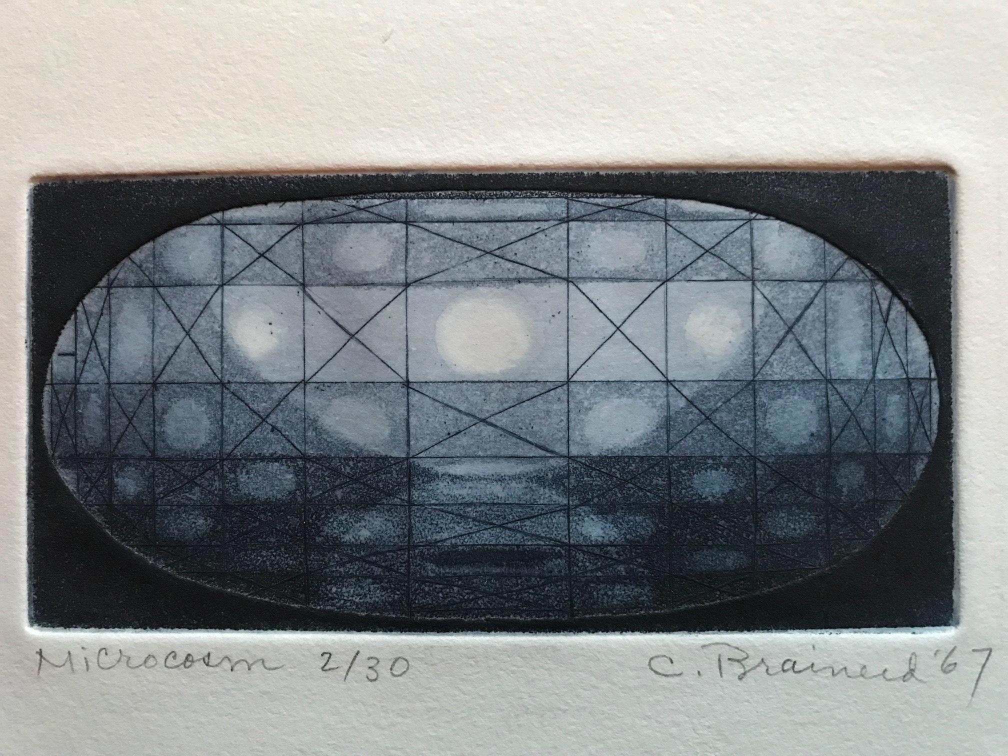 Charlotte Brainerd, Microcosm, 1967