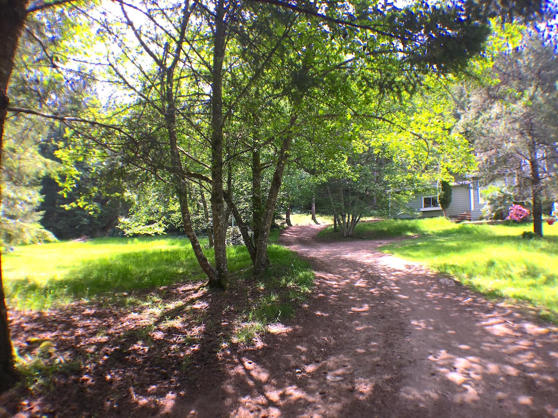 Driveway 2.jpg