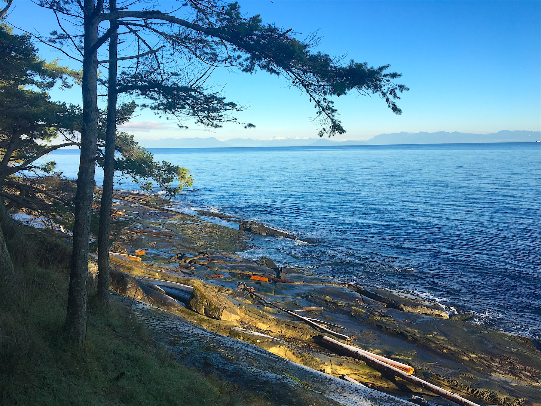 DL 86 shoreline.jpg