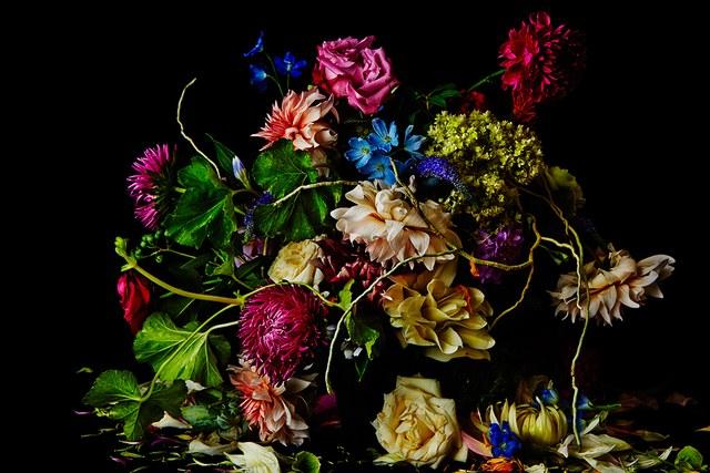 From his book,  Encyclopedia of Flowers   Courtesy of Azuma Makoto