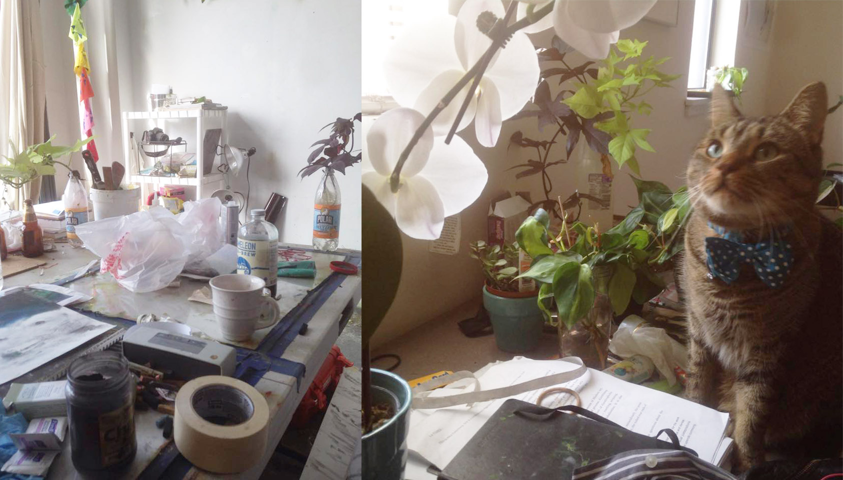 Rosie's Workspace