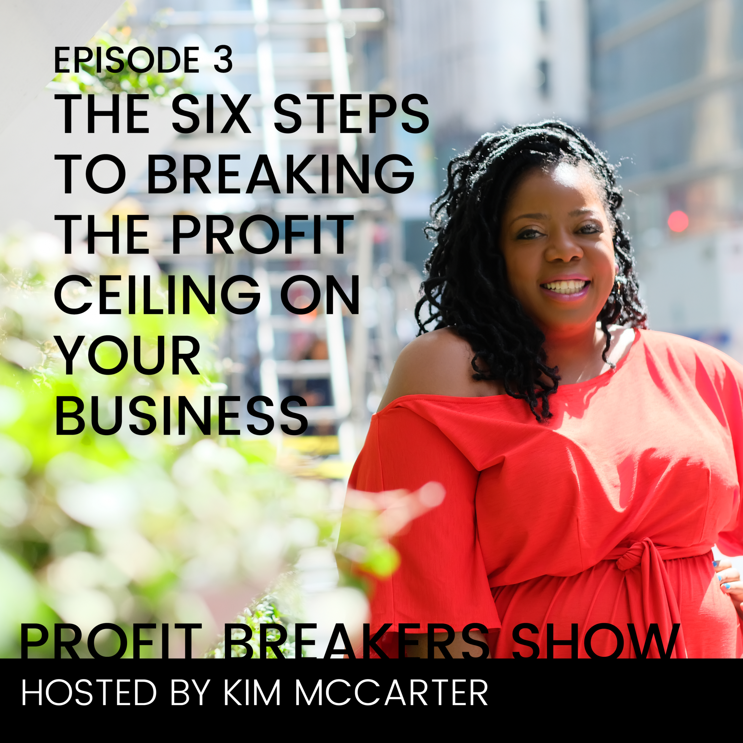 profit breakers podcast EP3.png