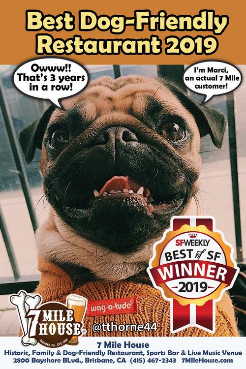 Best+of+2019+Dog+Friendly+Restaurant+Pug+Poster.jpg