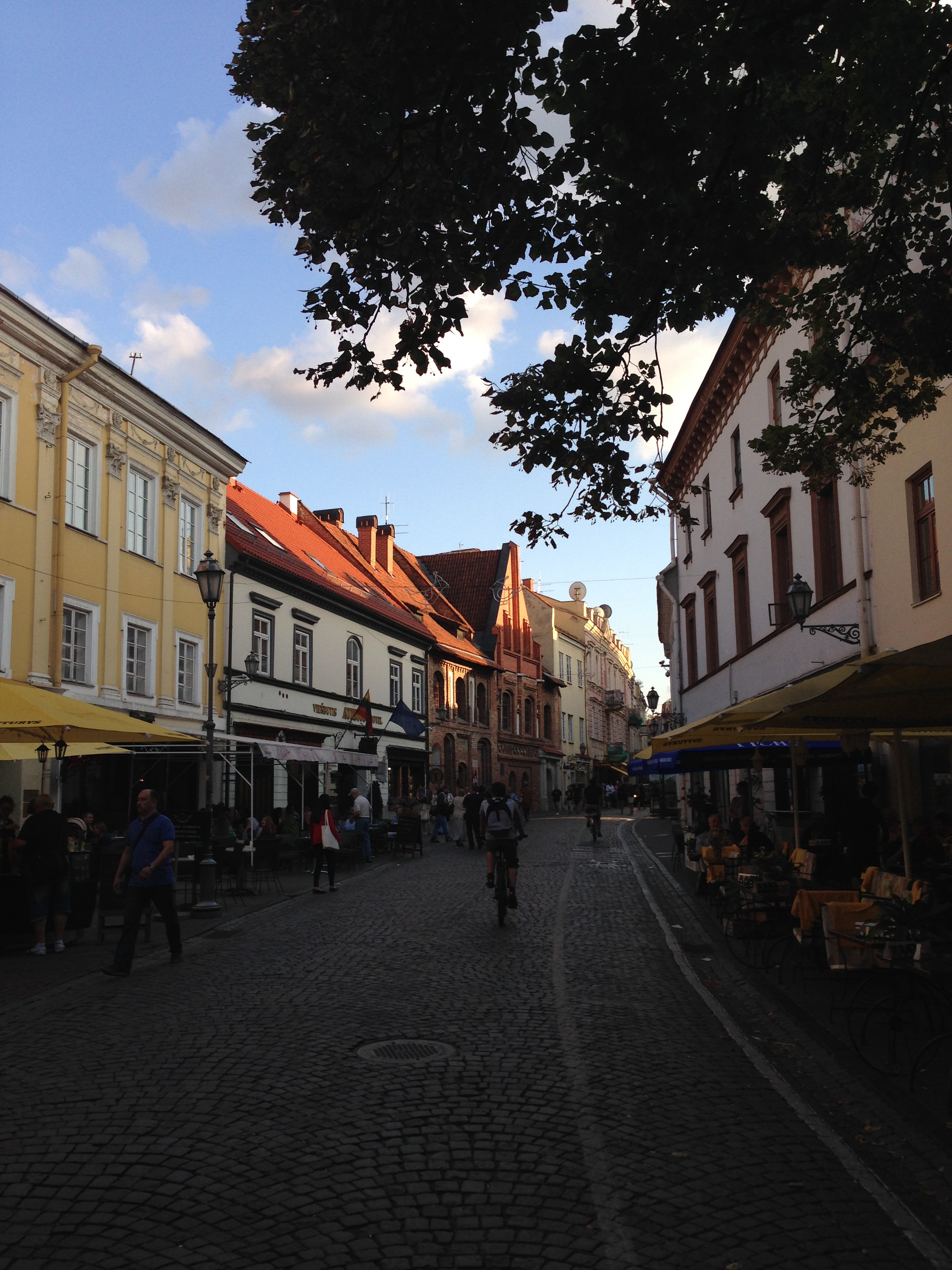 Pilies Street is a bit of a tourist trap, but Lithuania is a fairly cheap country, and so you won't have to spend a great deal of money. Make sure to get a menu with prices on, too.