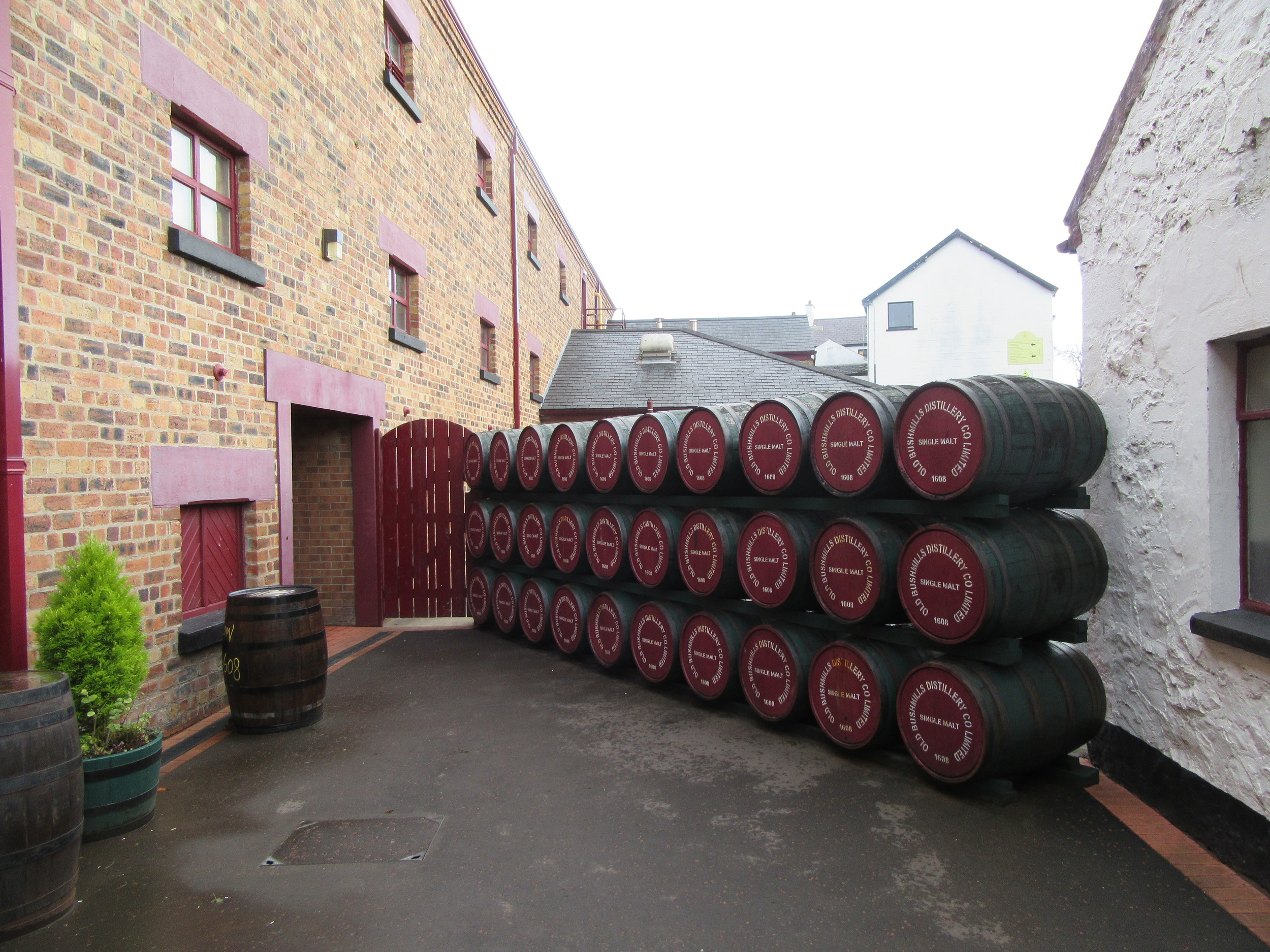 Old Bushmill's distillery - the world's oldest. It was granted its licence in 1608.