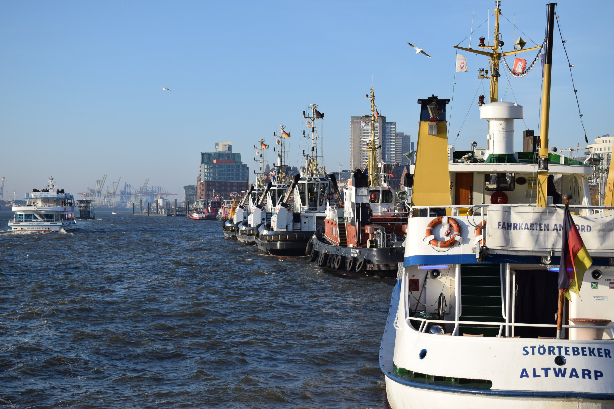 Harbour Cruises are popular with tourists, and dozens leave the St Pauli Piers every day.
