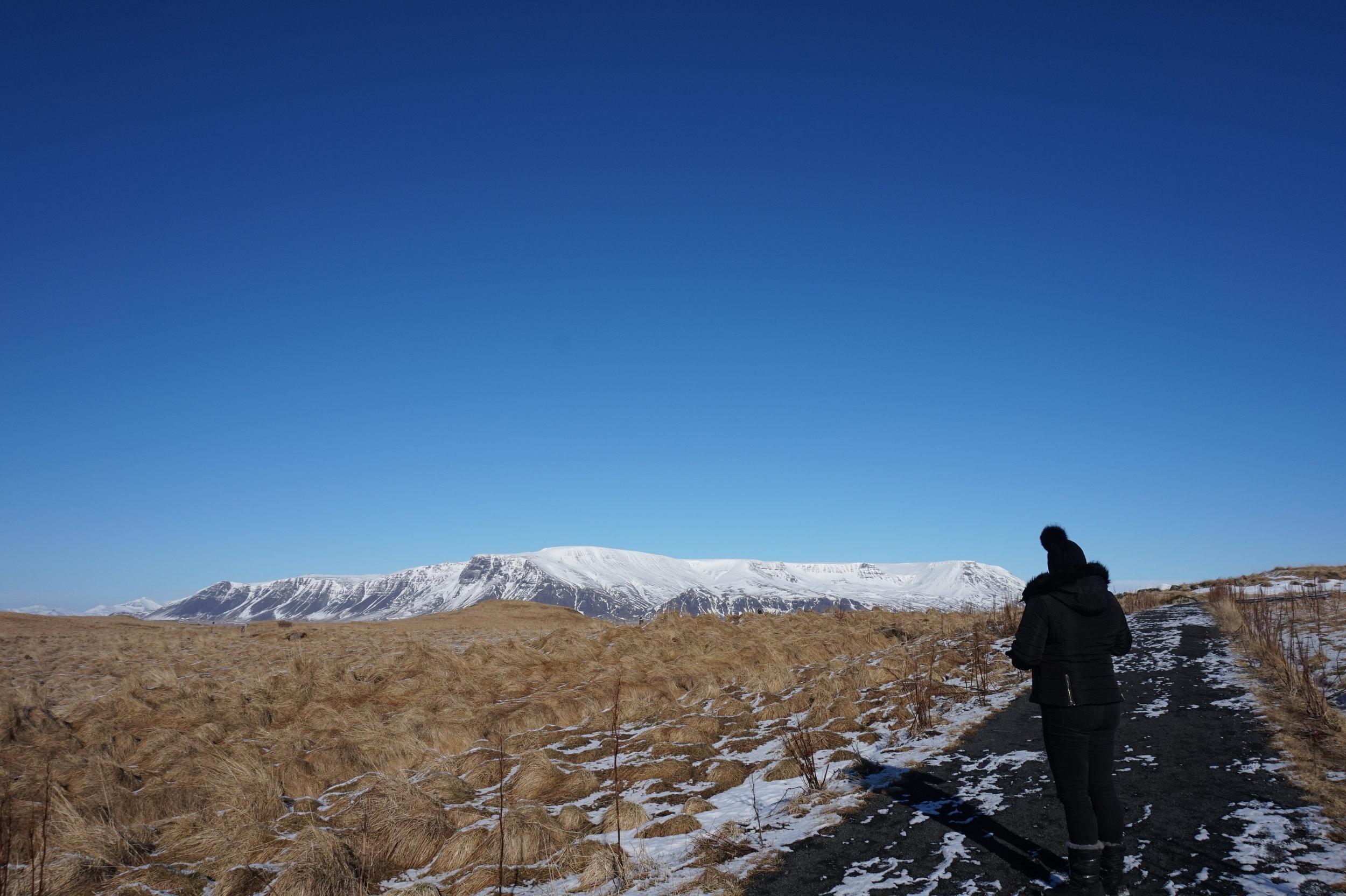 Videy-Island-Path-Reykjavik-Iceland