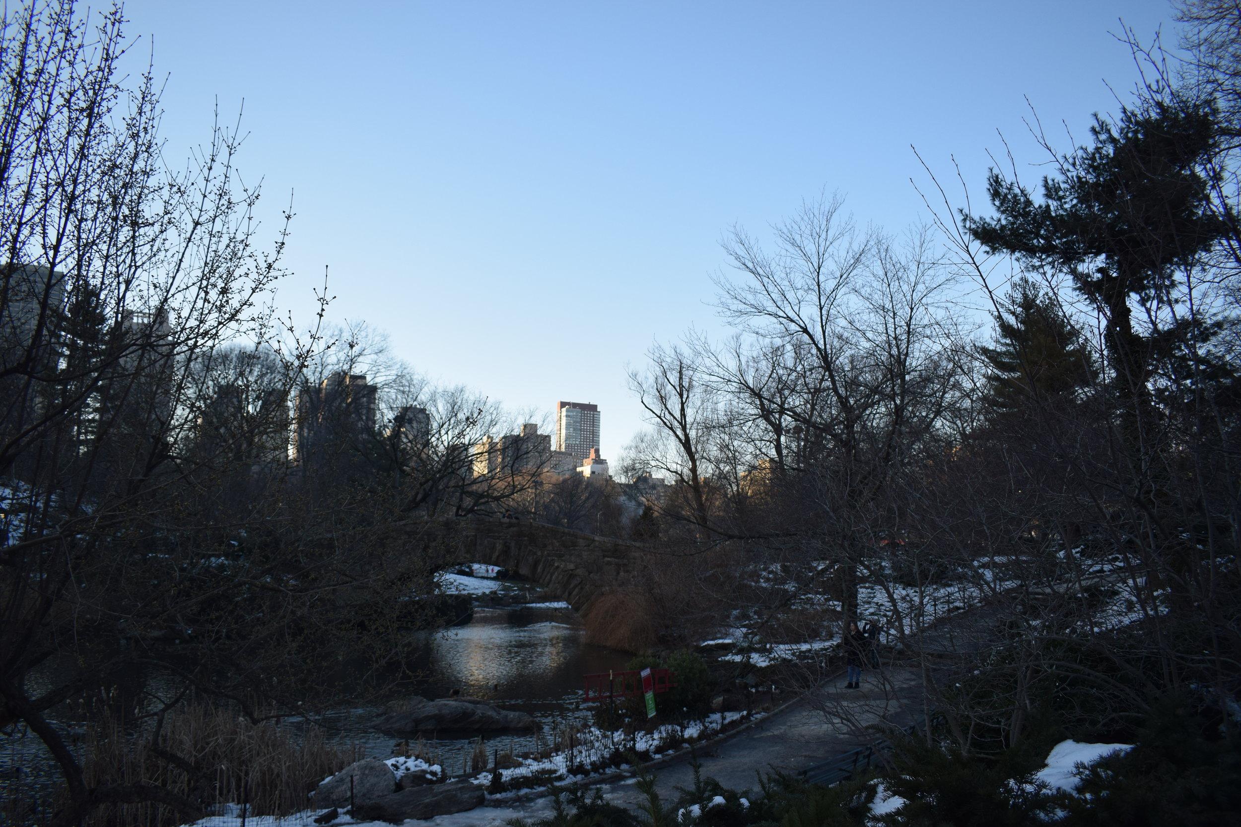 Central-Park-Sunset-Winter