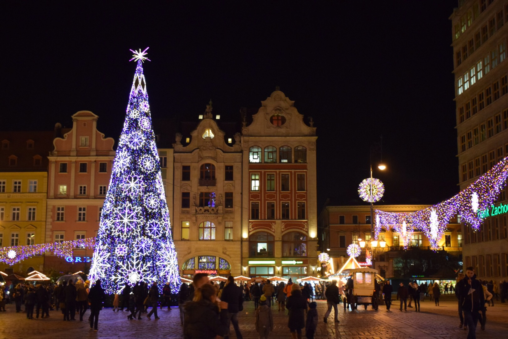 The Christmas tree in Market Square.