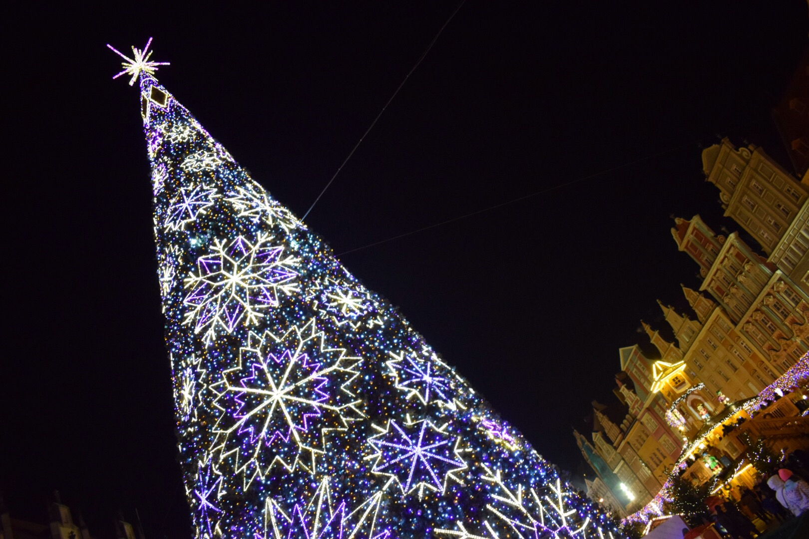 Wroclaw-Market-Square-Christmas-Tree