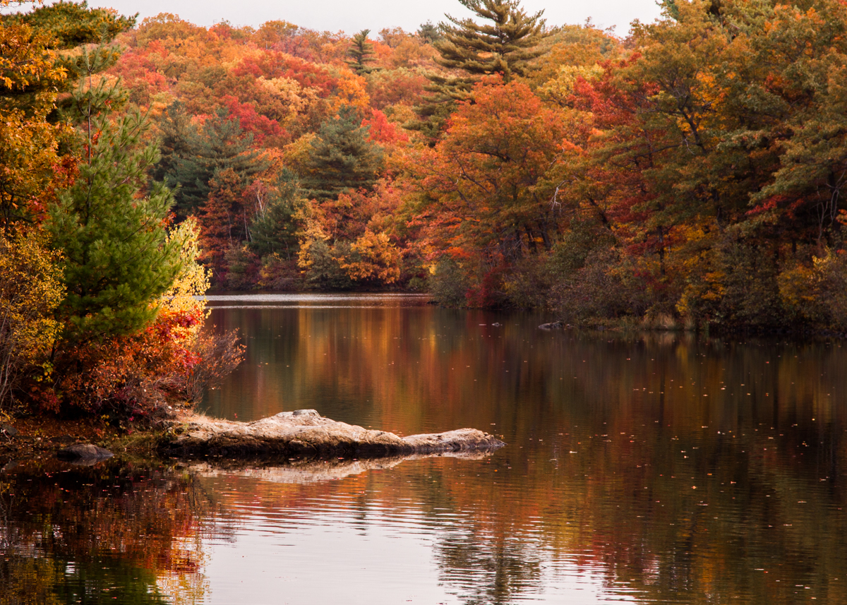 Massachusetts'Birch Pond with its beautiful fall colours. Image credit:  Massachusetts Office of Travel & Tourism / Creative Commons