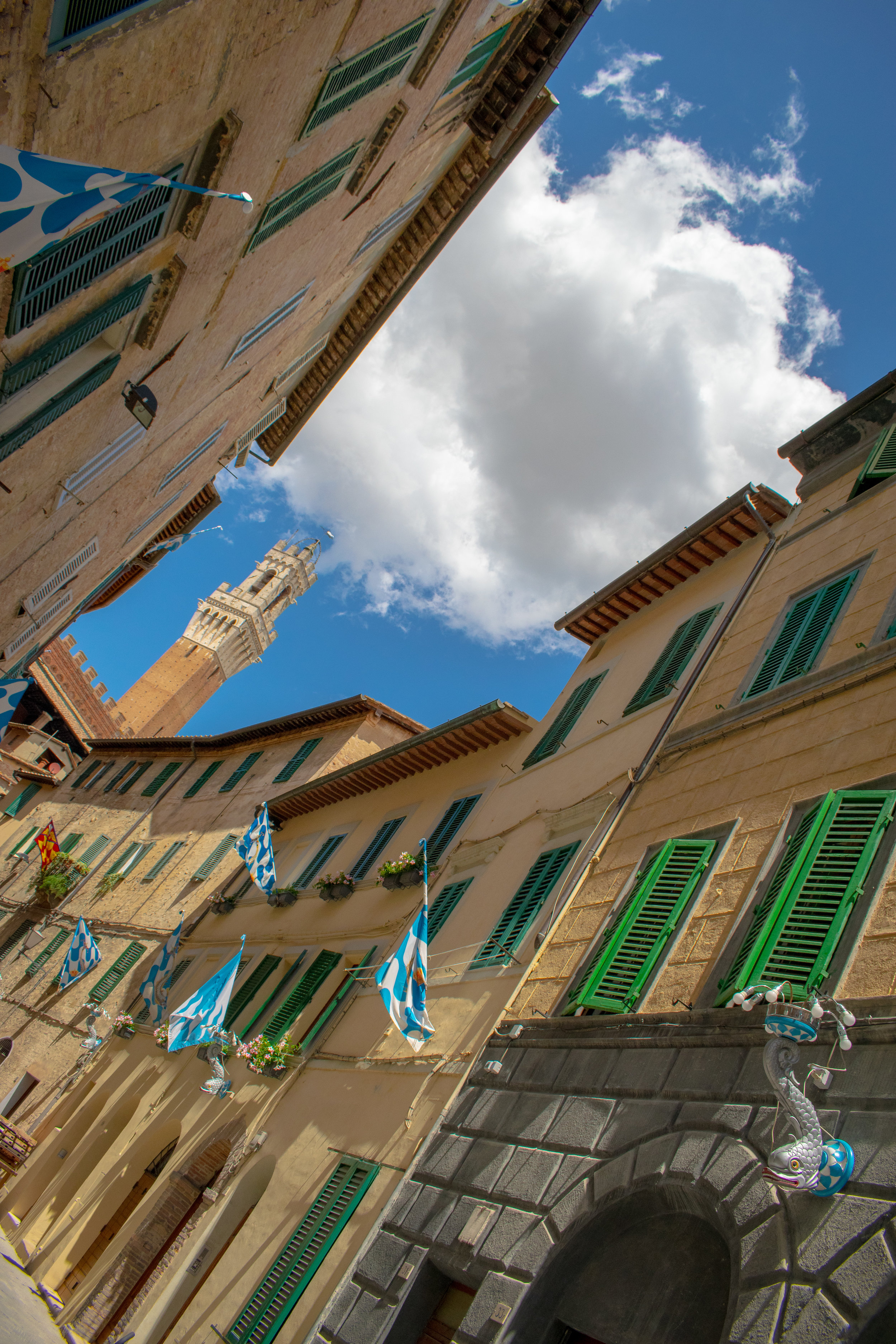 Siena dressed for the Palio.