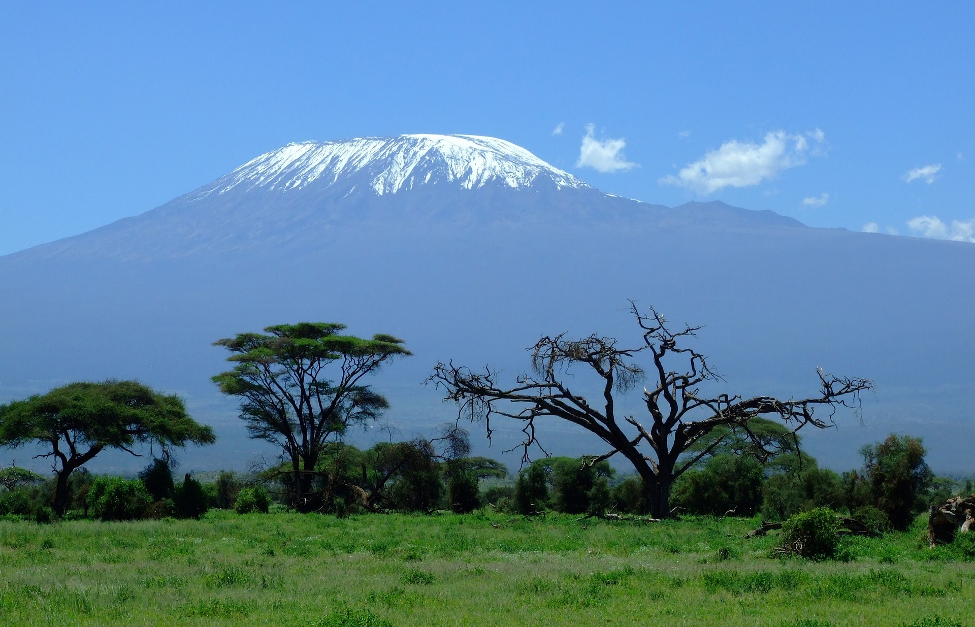 Mount Kilimanjaro dominates the skyline on this otherwise flat African plain.