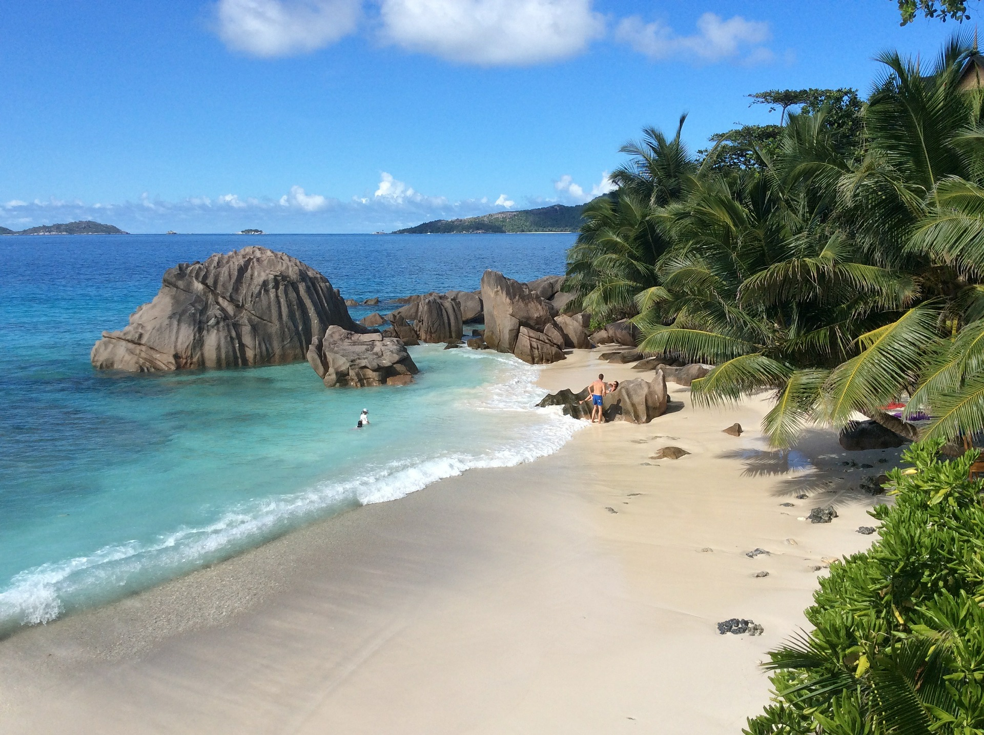Seychelles-Beach-Rocks-Palm-Trees