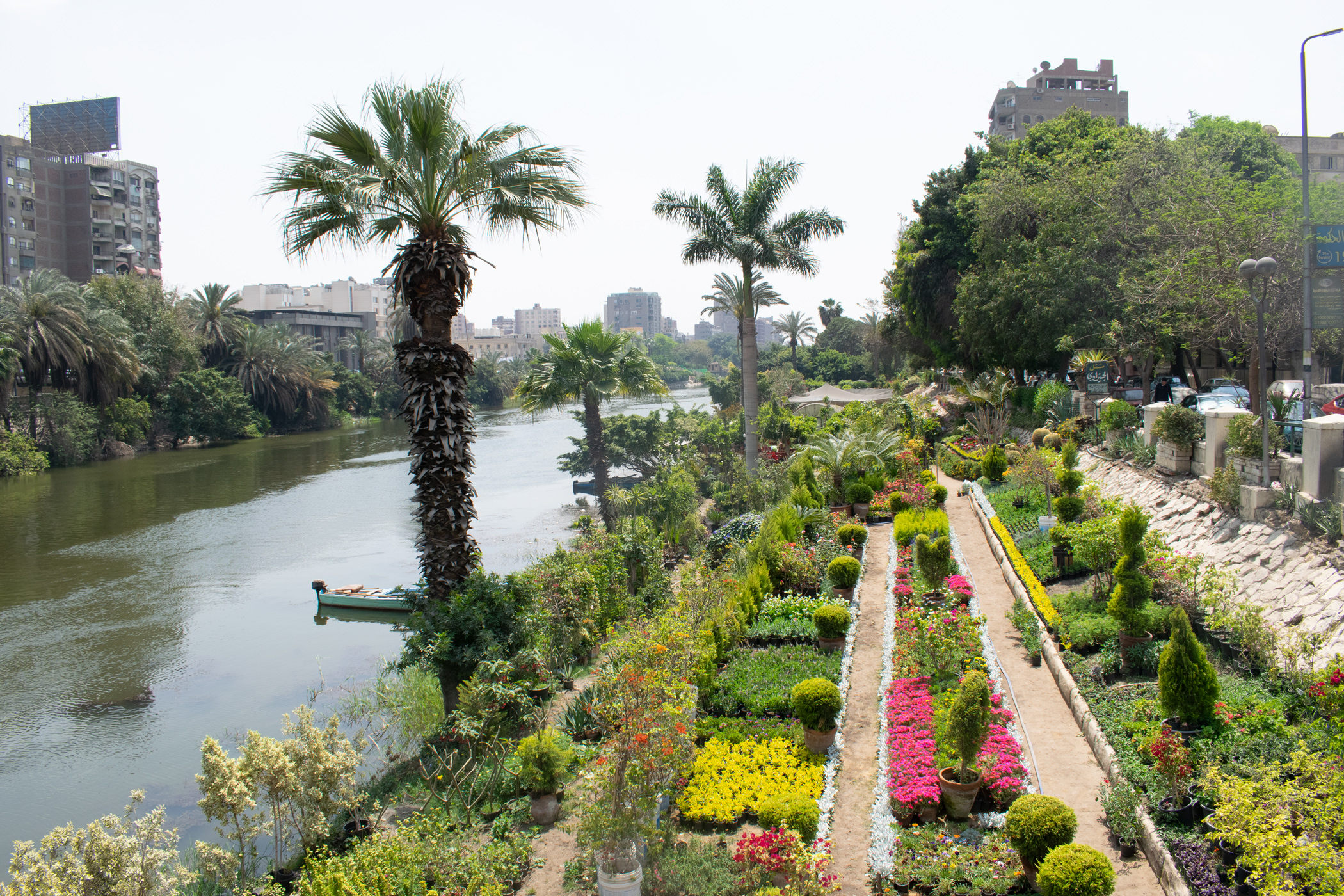 One of the Nile's beautiful riverside gardens.