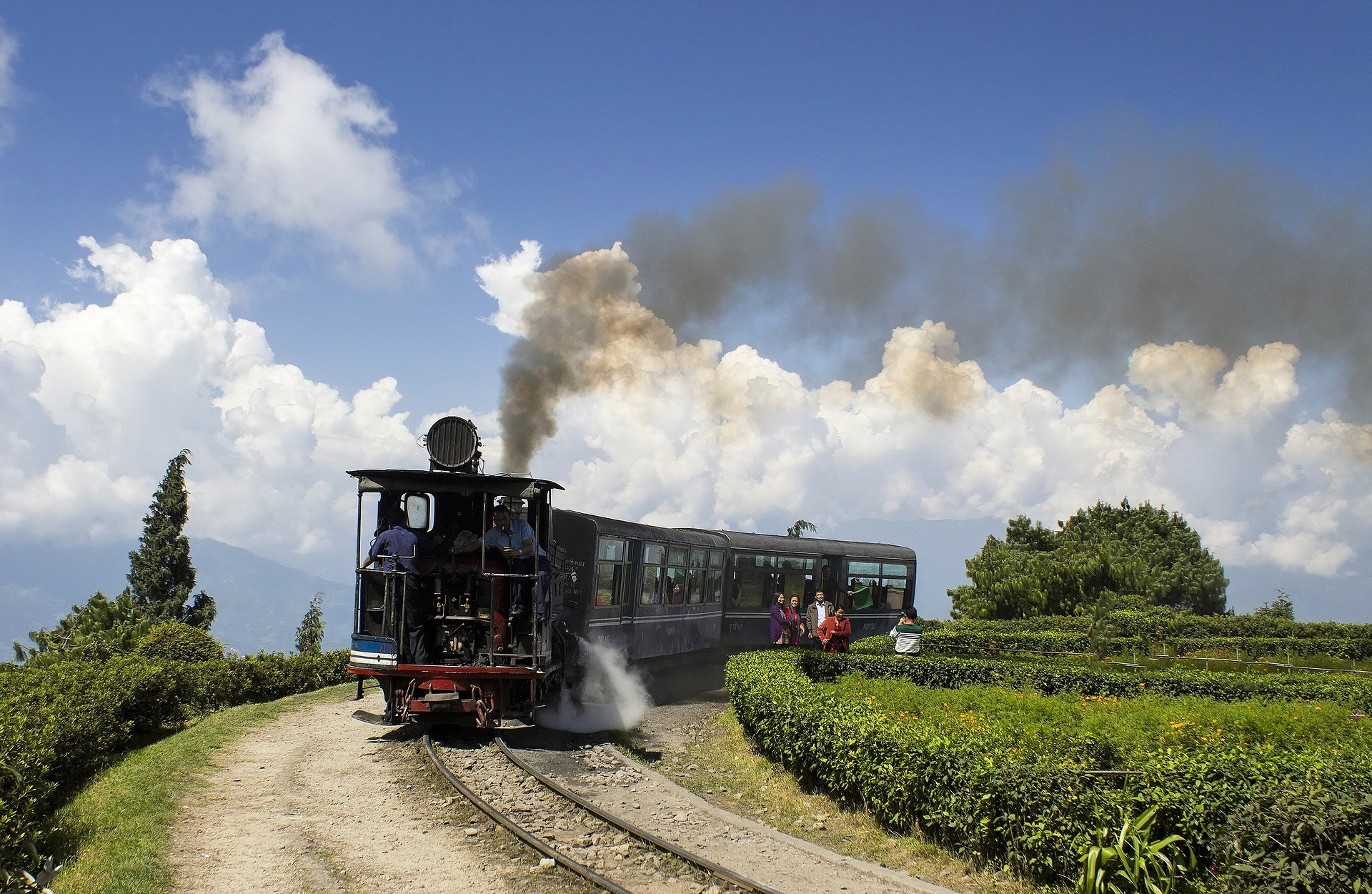 Darjeeling has more than just its world-famous tea.