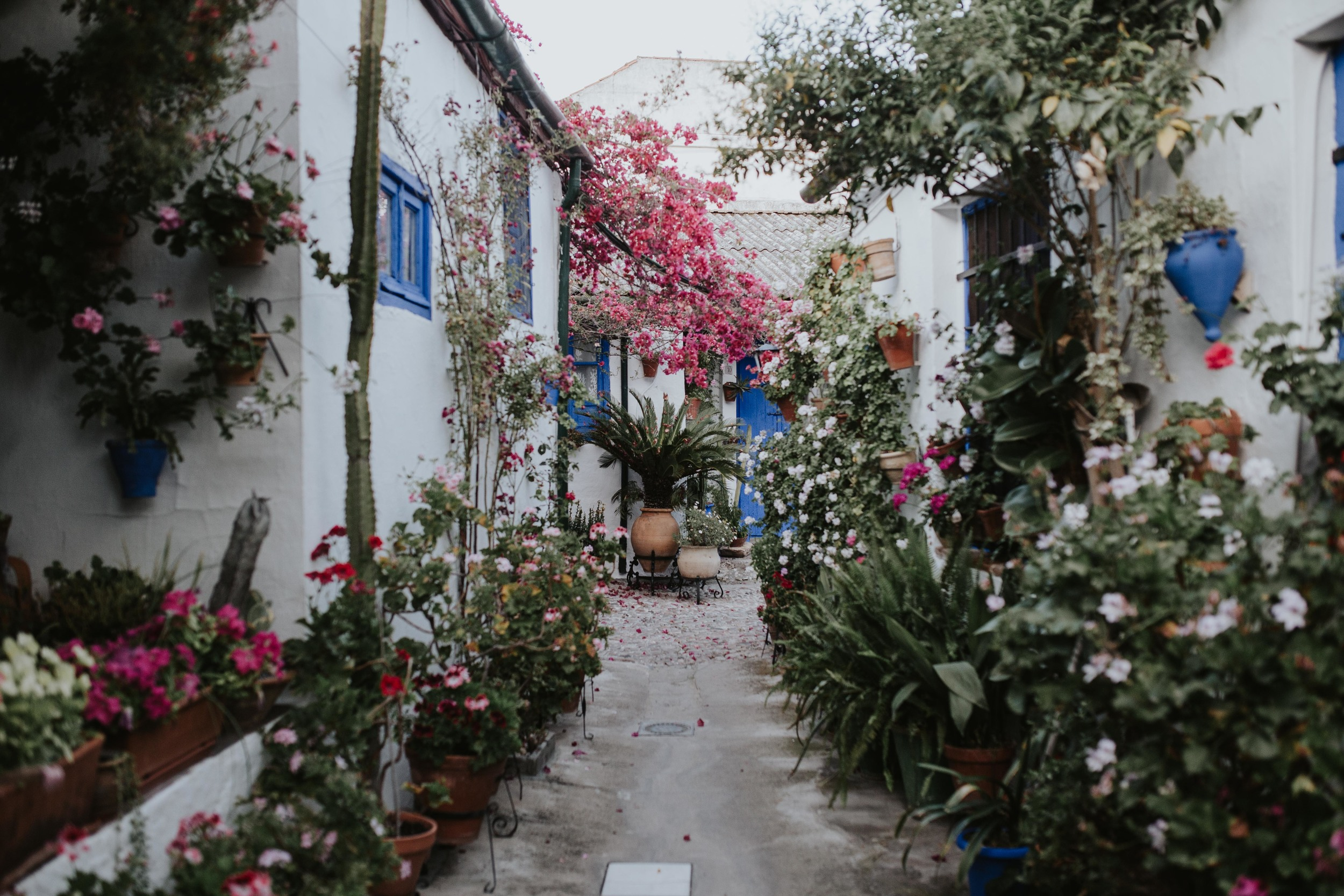 The patios of Cordoba - Wedding inpiration