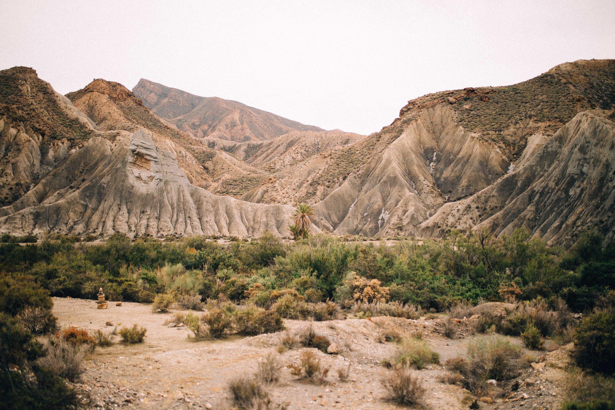 desert wedding location