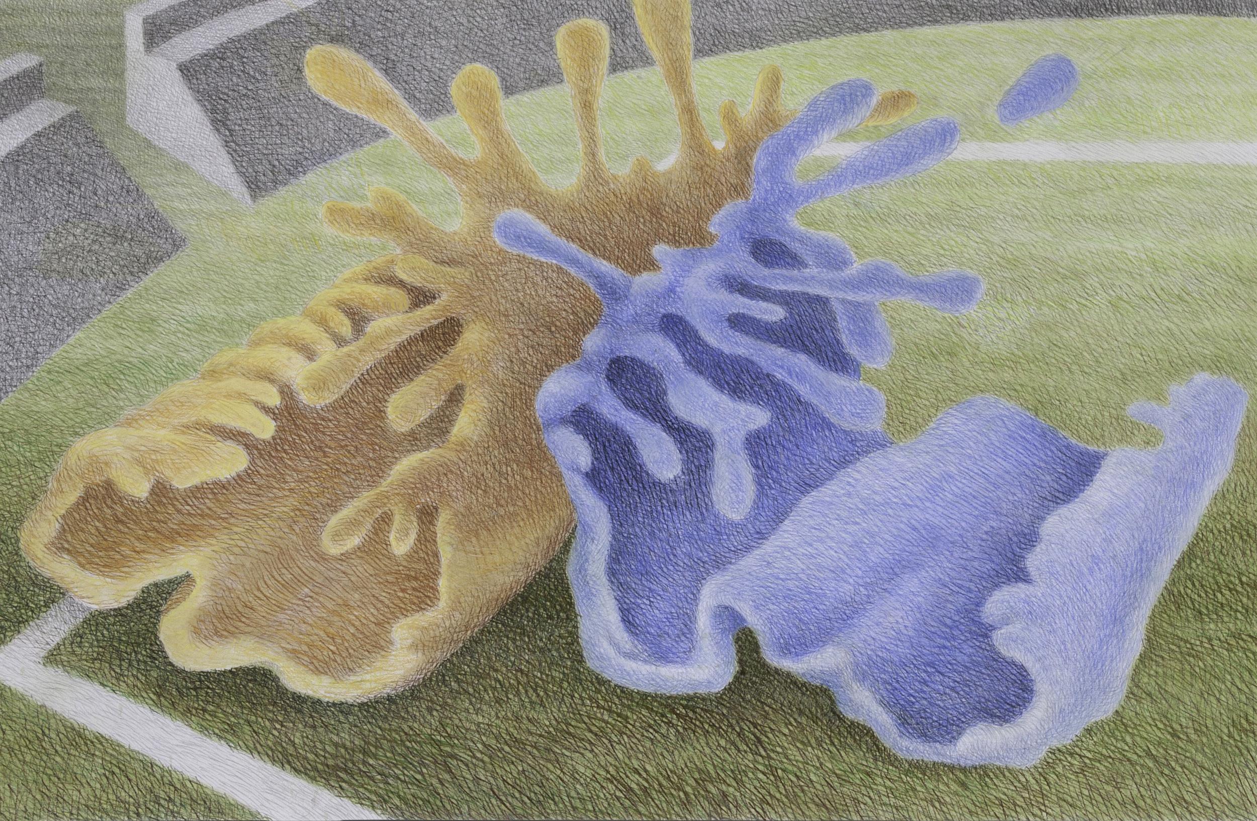 "Sport'n (2012)  pastel, graphite  30"" H x 40"" W"