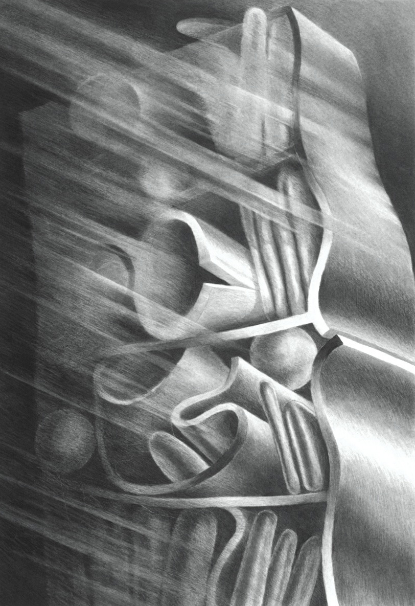 "Sleep- Archives (1997)  charcoal  40"" H x 26"" W"