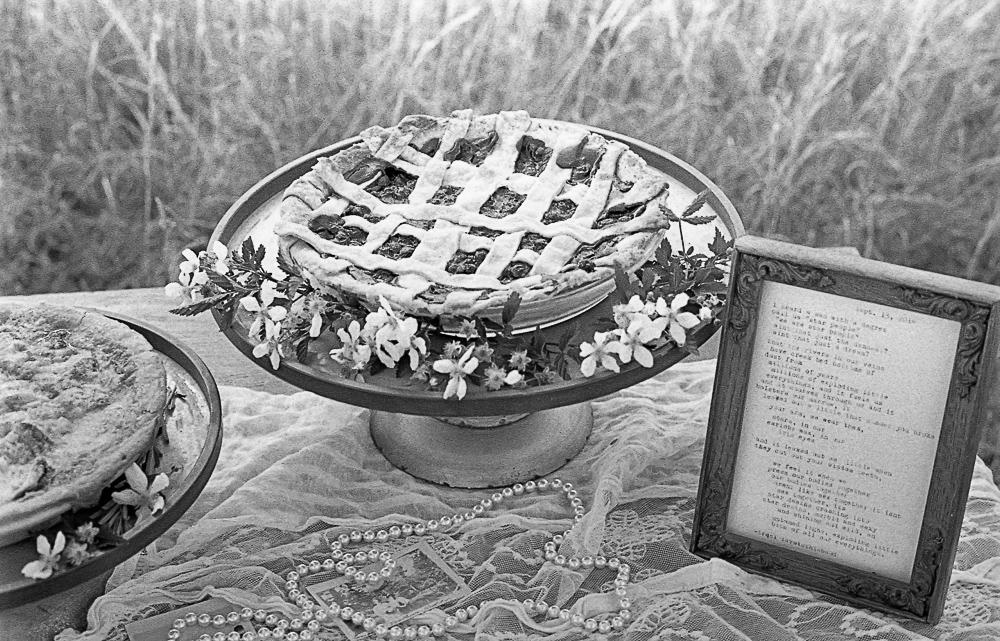 Cassie Cook Photography-Memphis TN-portrait and wedding photographer -001.jpg