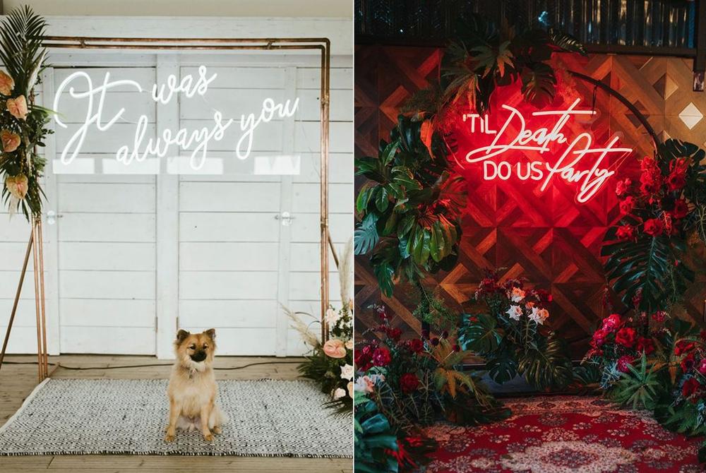 Foto:  White Fox Studios  Letrero:  Neon Rebublic