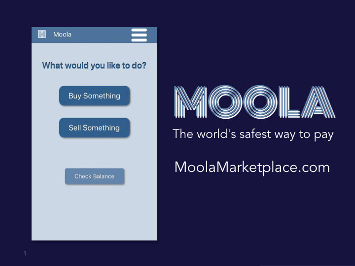 Moola Marketplace  Instant, private payment platform keeps buyer's financial information completely private, and enables merchants to dramatically lower transaction costs.    READ MORE >>