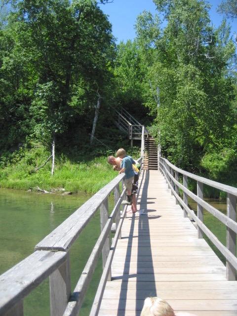 Lagoon Bridge in Summer