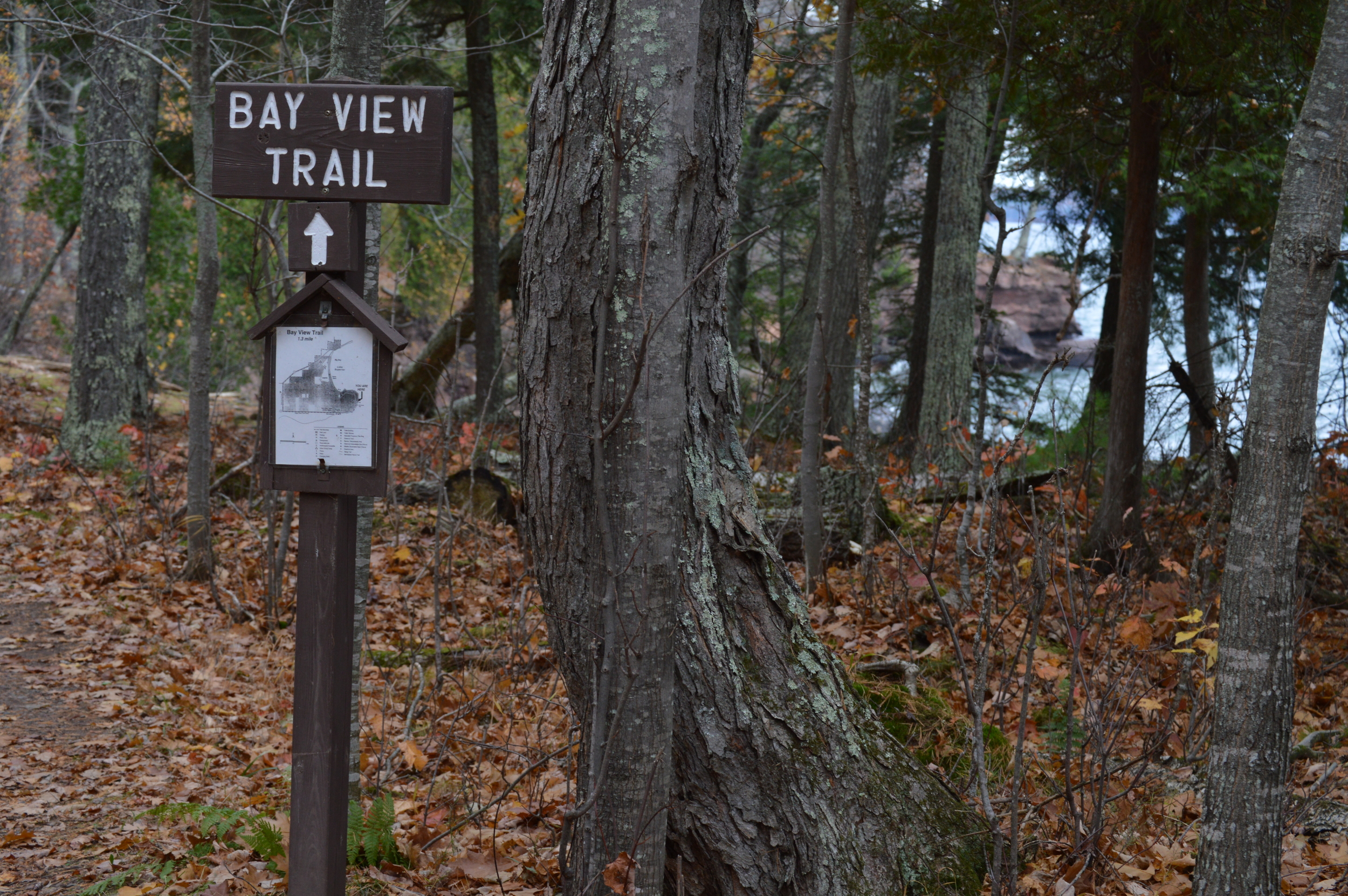 Trail on North Side of The Point