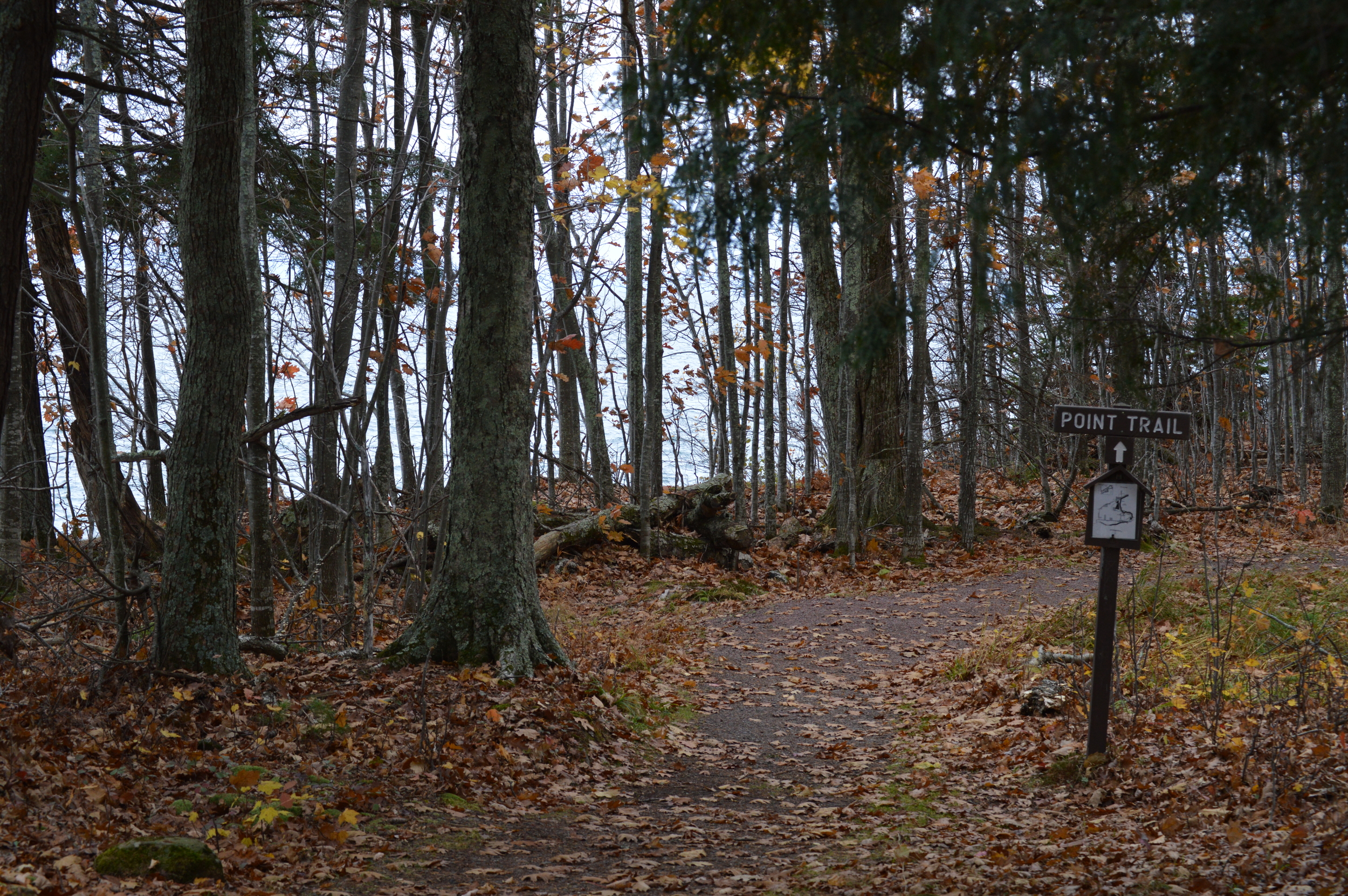 Trail on South Side of The Point