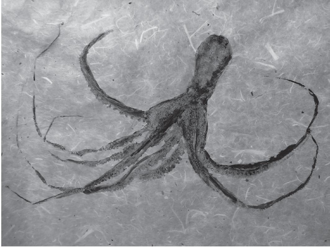 Octopus | ALYSSA IRIZARRY  Octopus and block printing ink on paper, 18 x 24 in., 2016