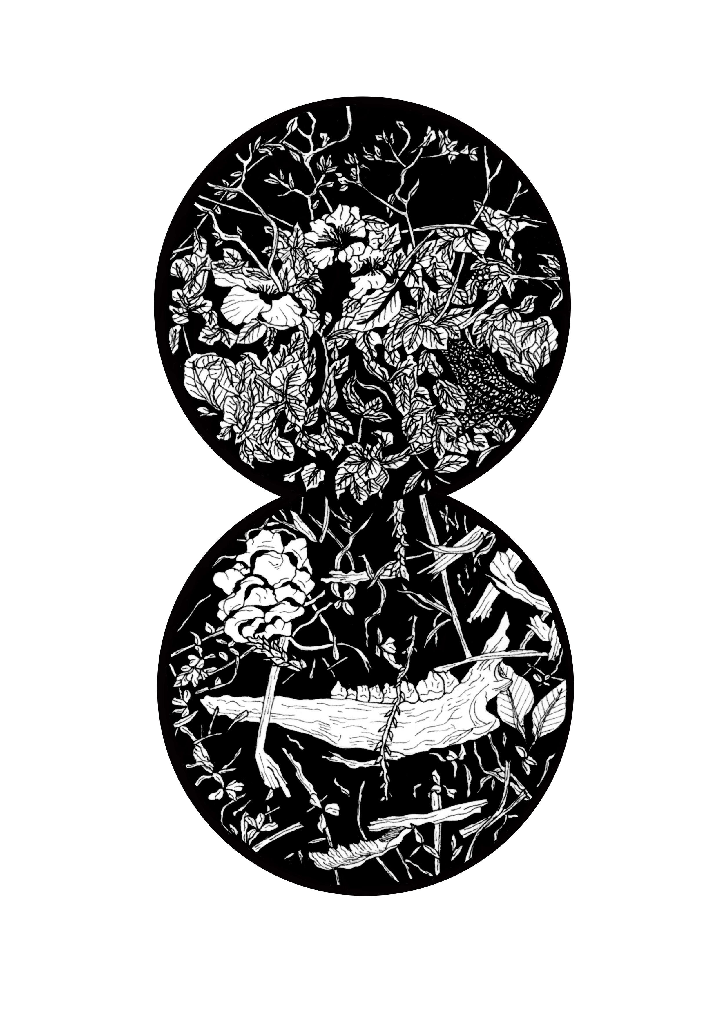 We Were Here: Snake/Mandible | NATALIE VESTIN  Ink on paper, 4 1/2 x 6 in., 2016