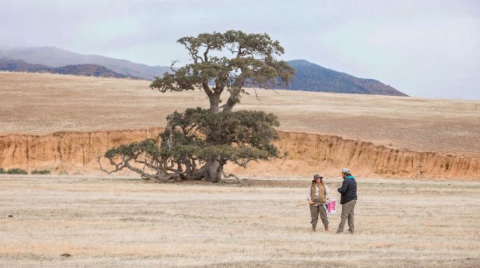 Melissa McCarthy on set at Tejon Ranch.