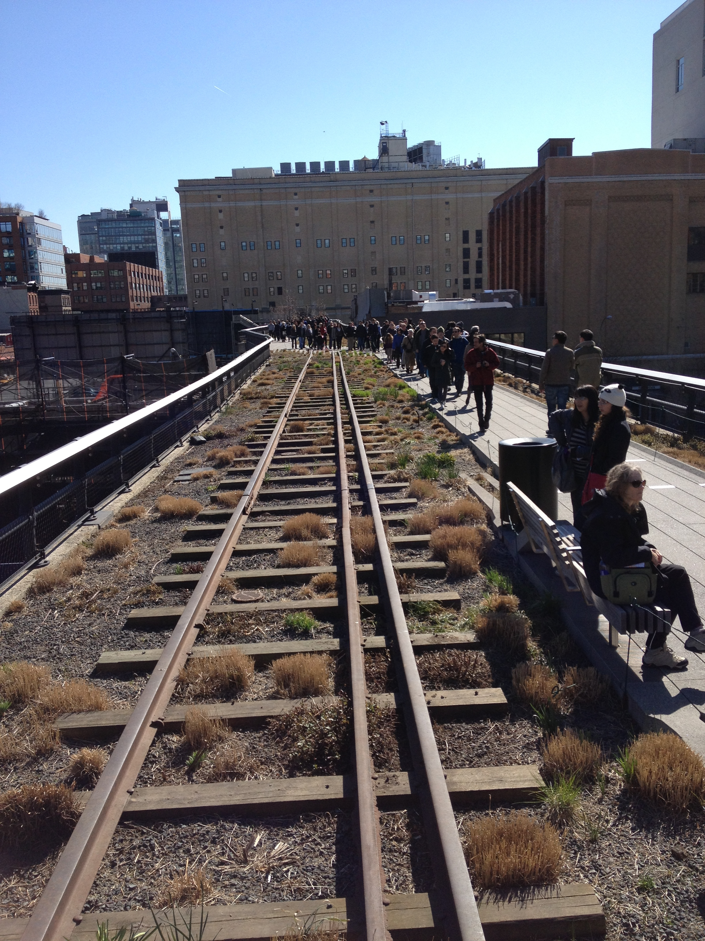 The High Line, New York. Another cell phone image for which I apologize.
