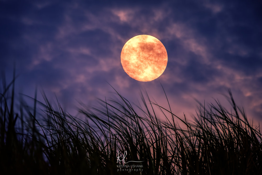 KLishawa Strawberry Moon.jpg
