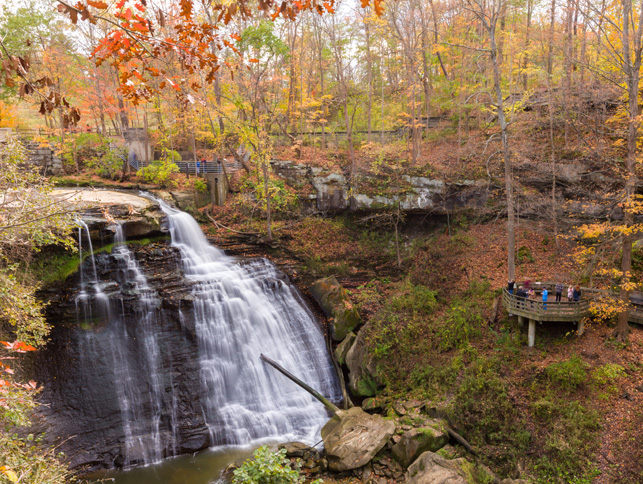 Article-Fall-Family-Hikes.jpg