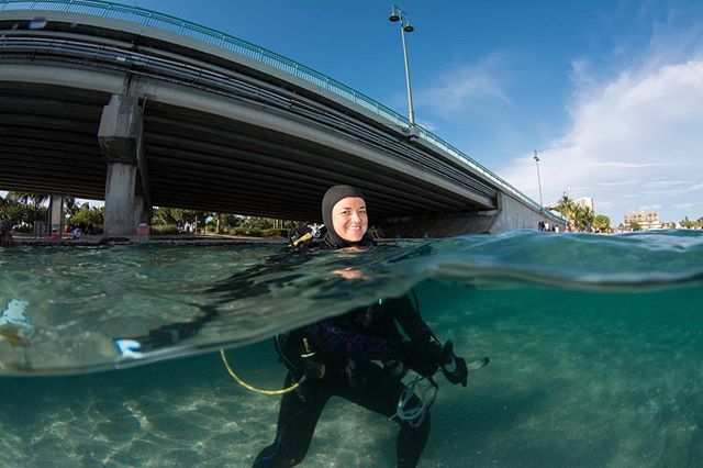 In my latest piece for @verobeach_portfoliomag, I feature the work of South Florida octopus scientist @theoctogirl! She studies how two species of octopus - the common octopus and long arm octopus - coexist beneath the famous Blue Heron Bridge. She's also got an upcoming project to look at the good bacterial community that lives on their skin, which may protect them from disease and infection. Be sure to follow her page to stay updated on her research and for cool facts and photos of octos. • #womeninstem #marinebiology #underwaterphotography #scicomm #conservationphotography