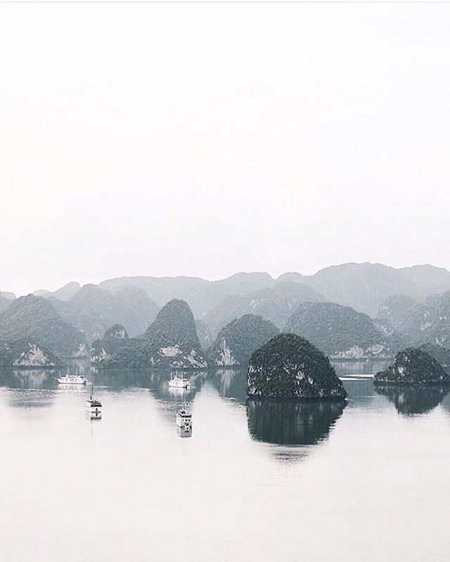 Do Not Disturb: Reflecting No better place to breathe in, breathe out than with @twheat's chill spots. Who's in your chill spot? Tag a friend to #makechill. . . . #morechill #beenchill #artofchill #prochillas #halongbay #vietnam #reflecting #wanderlust #exploreeverything #justgoshoot #wildsights #keepitwild #traveltheworld #minimal #mindtheminimal #minimalmood #minimalexperience #minimalmovement #unlimitedminimal #cannabisdesign #cannabiscommunity #cannabisculture #weshouldsmoke #onlysmokethefinest #stonernation #highlife #highsociety #streetdreamsmag