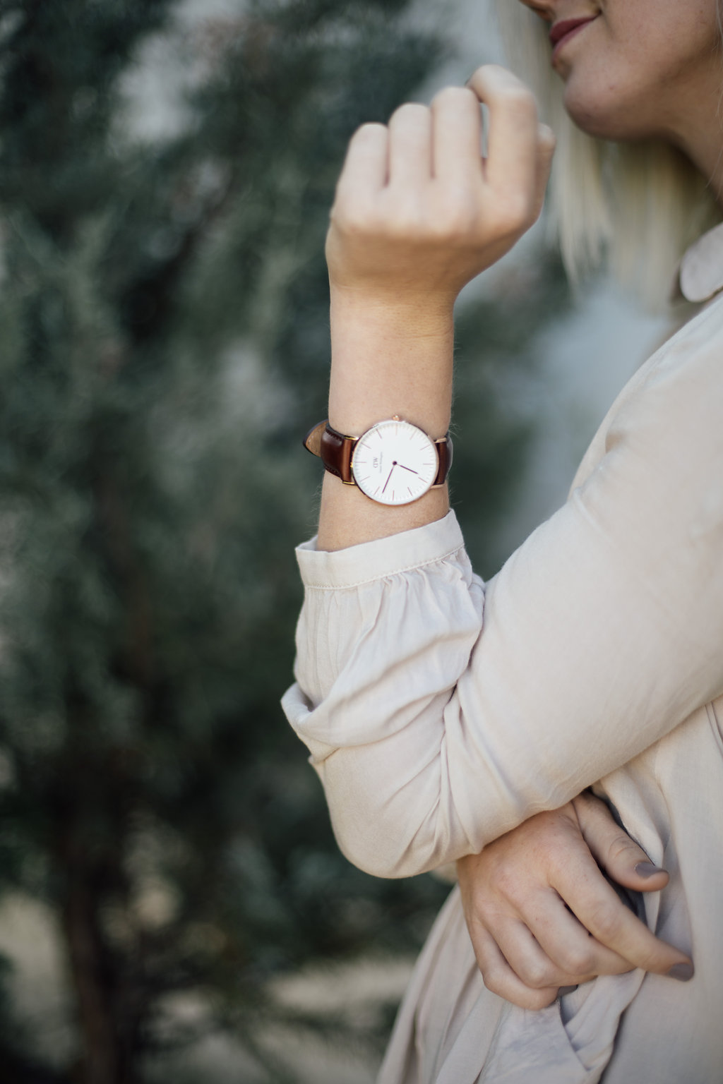 Watch / Daniel Wellington