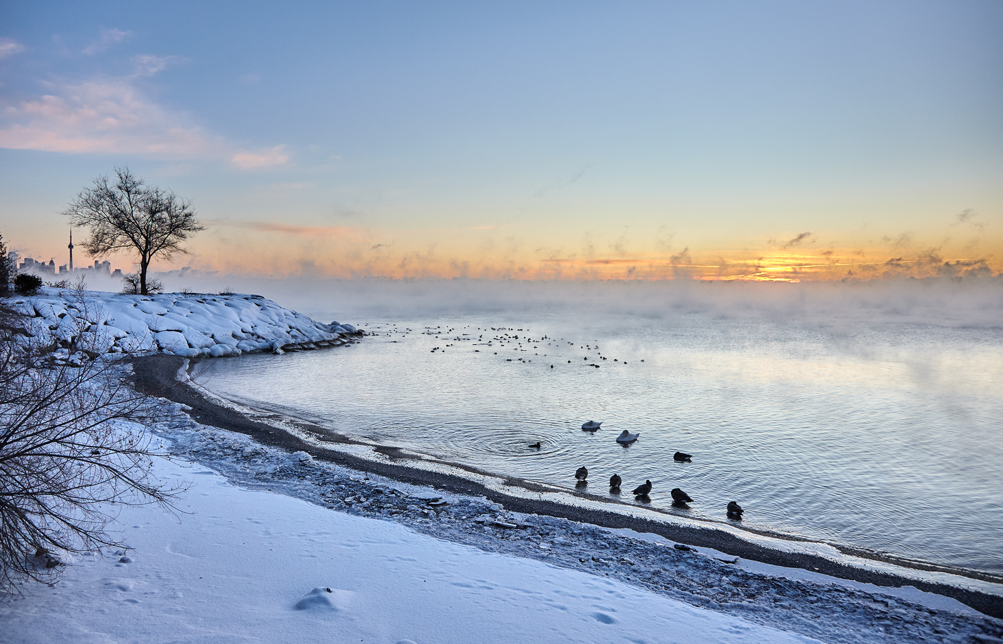 humber-bay_park_snow_sunrise_cn-tower_ducks_beach_01.jpg
