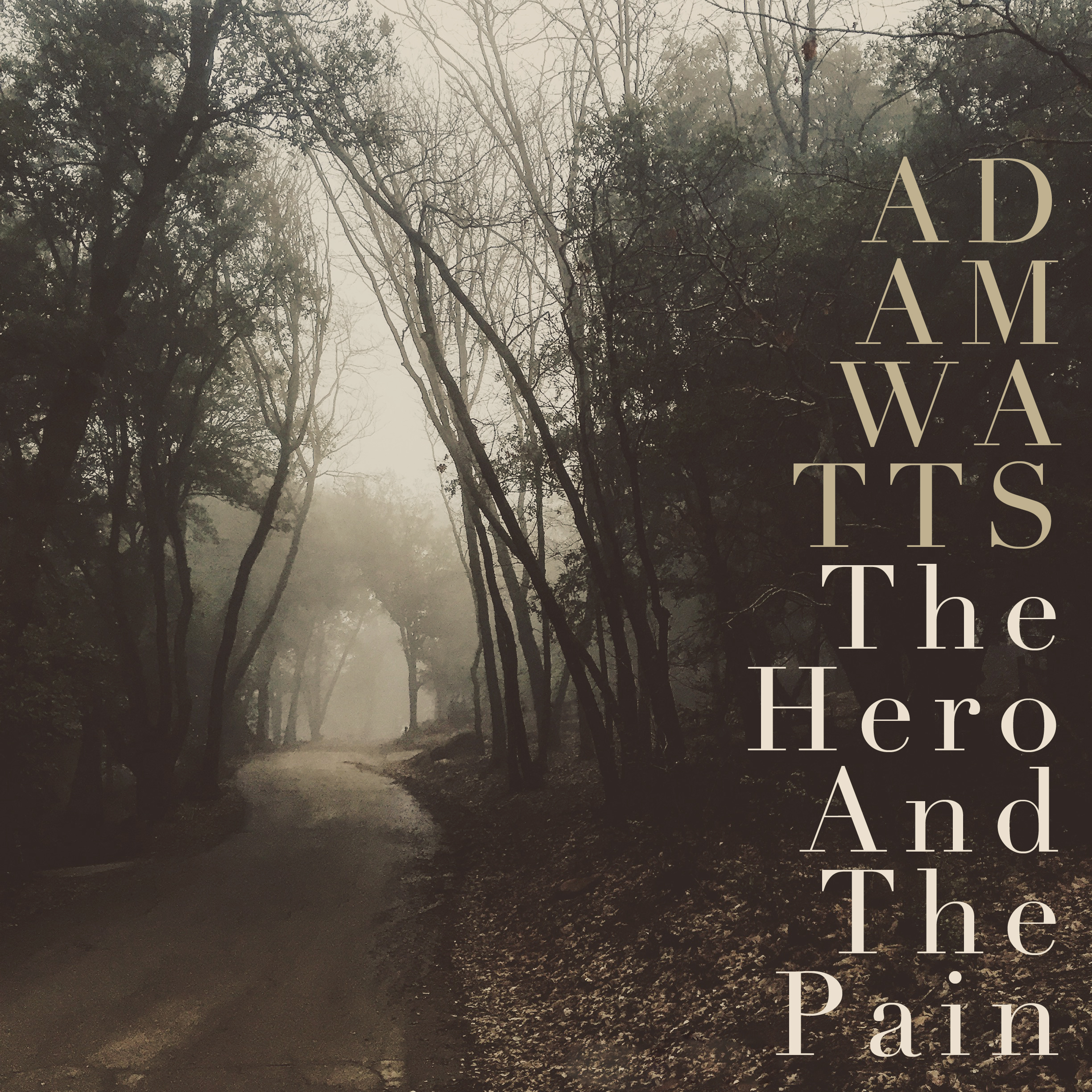 The Hero And The Pain-Adam Watts (Cover).jpg