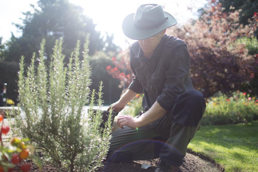 Garden design expertise