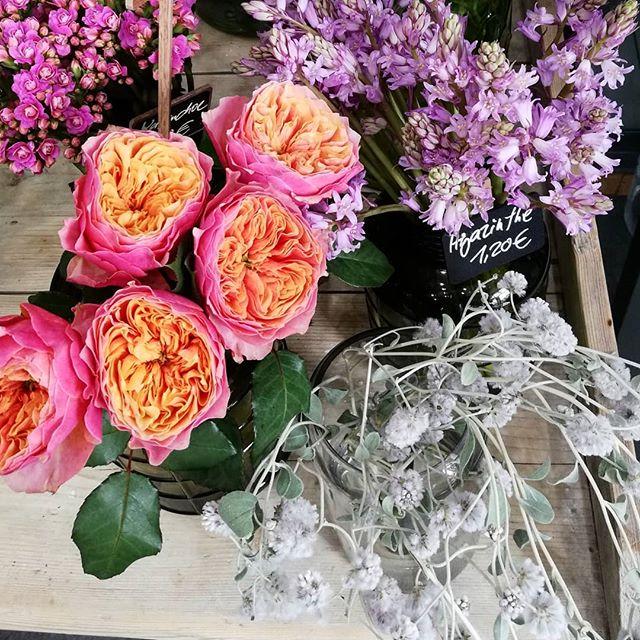 Nach dem Muttertagswochende war alles komplett leergekauft 😊. Jetzt ist alles wieder aufgeräumt und es gibt eine schöne neue Blütenauswahl bei uns im Store.  #kiansgarden #flowercatering #weeklydelivery #eventflowers #weddingflowers #floral #floraldesign #flowershop #munich #münchen #sendling