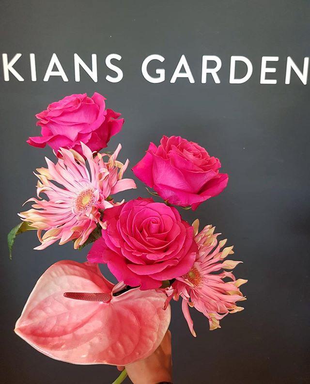 PINK FLOYD x PASTA TOSCANA  #kiansgarden #pinkfloyd #pastatoscana #feelinpink #sexyflowers #weekendvibes #wedeliver #makesomeonehappy #flowerlovers #floristic #tschaubellatschauuuuuu