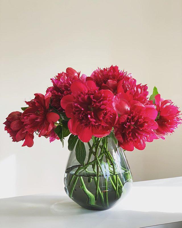 Wir wünschen euch tolle Pfingsten! #pfingstrosen #peonies #love #flower #bouquet #happy #weekend #kiansgarden #berlin #munich #peony #instaflower #florist #summer #flowercatering #wedeliver #flowers