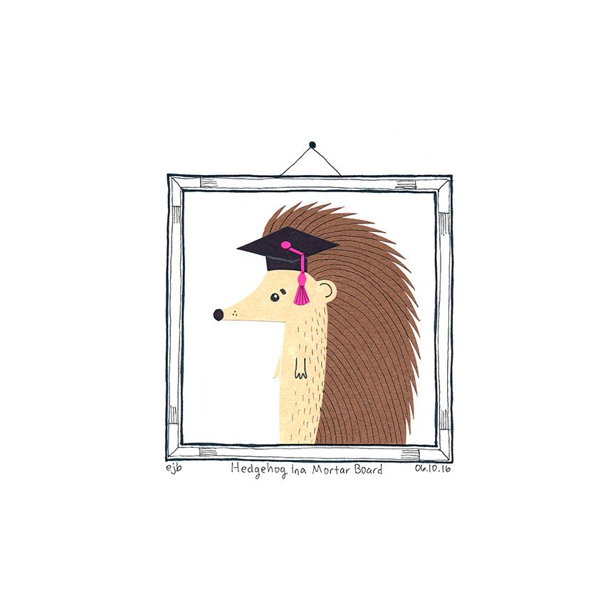 Day53_HedgehogMortarBoard_061016.jpg