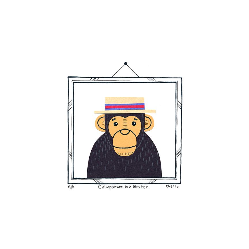Day60_ChimpanzeeBoater_061716.jpg