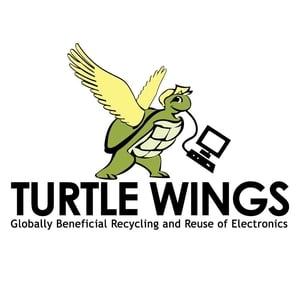 turtlewings.jpeg